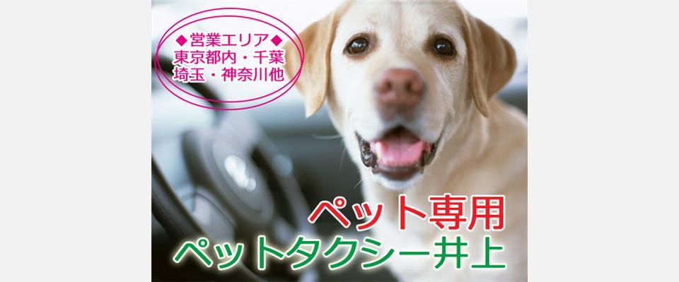 東京都でペットタクシーのペット専用タクシー井上ペッ