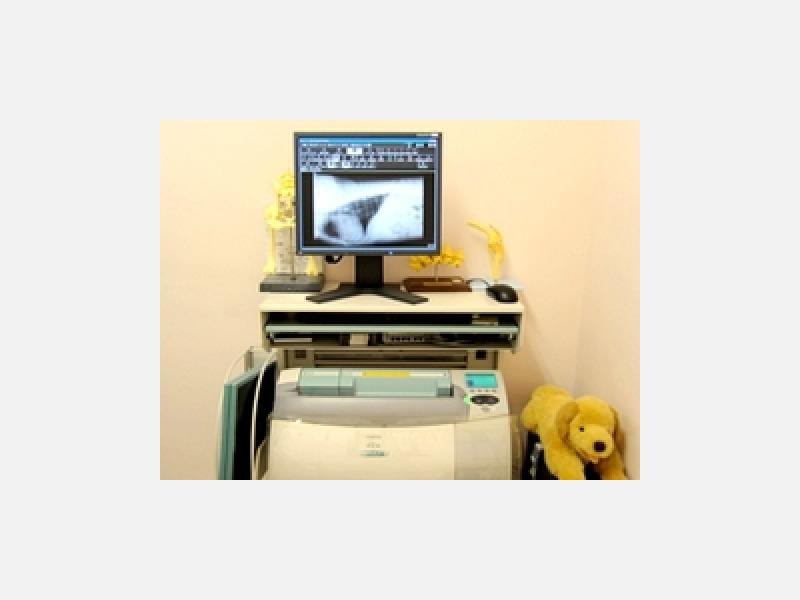 デジタルX線診断システム