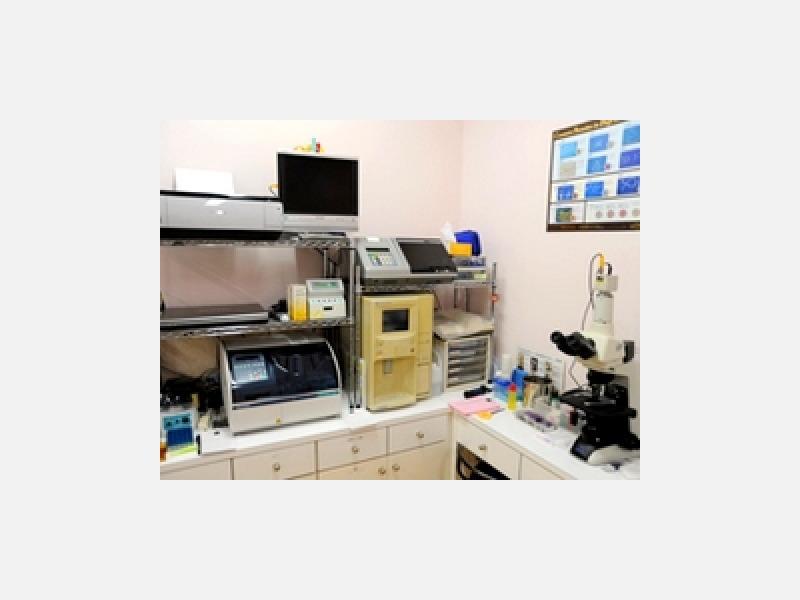 血液生化学検査機器、顕微鏡