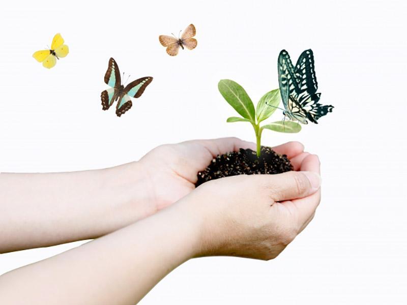 環境を守り、企業を支える札幌の永大紙業株式会社