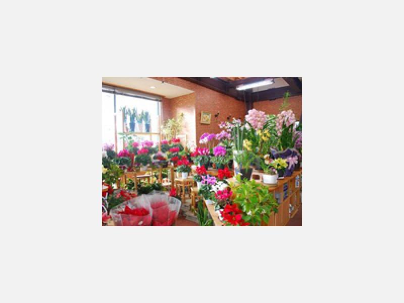 店内の様子です。様々なお花を取り揃えております。