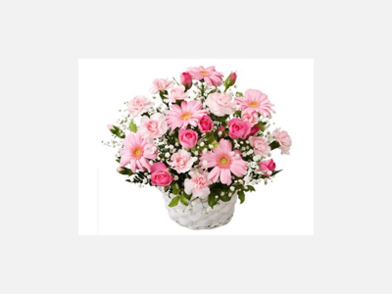 記念日にお花を送りませんか?