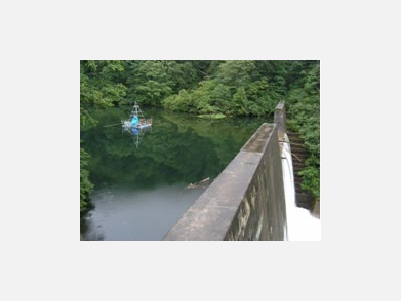 ダム湖調査