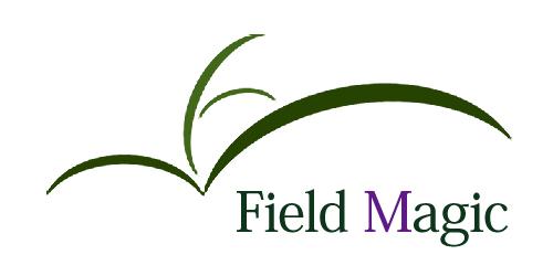 フィールドマジックロゴ