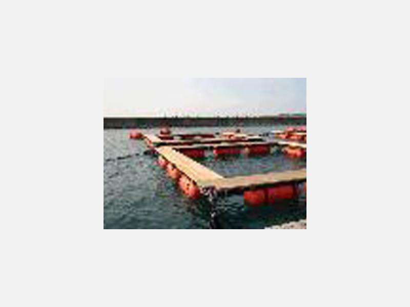 漁網・養殖網 漁業資材