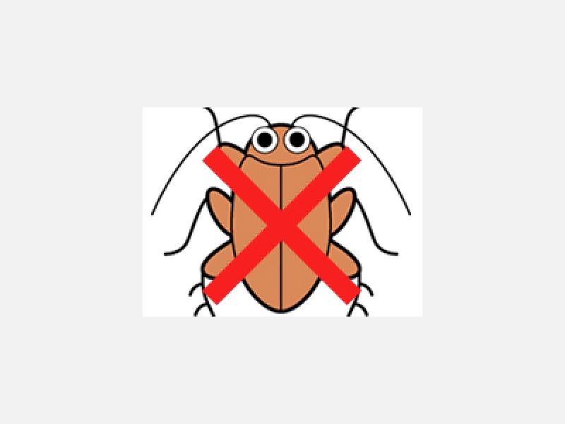 ゴキブリ駆除