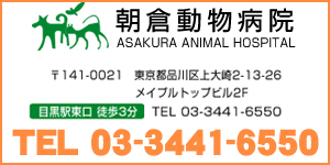朝倉動物病院ロゴ