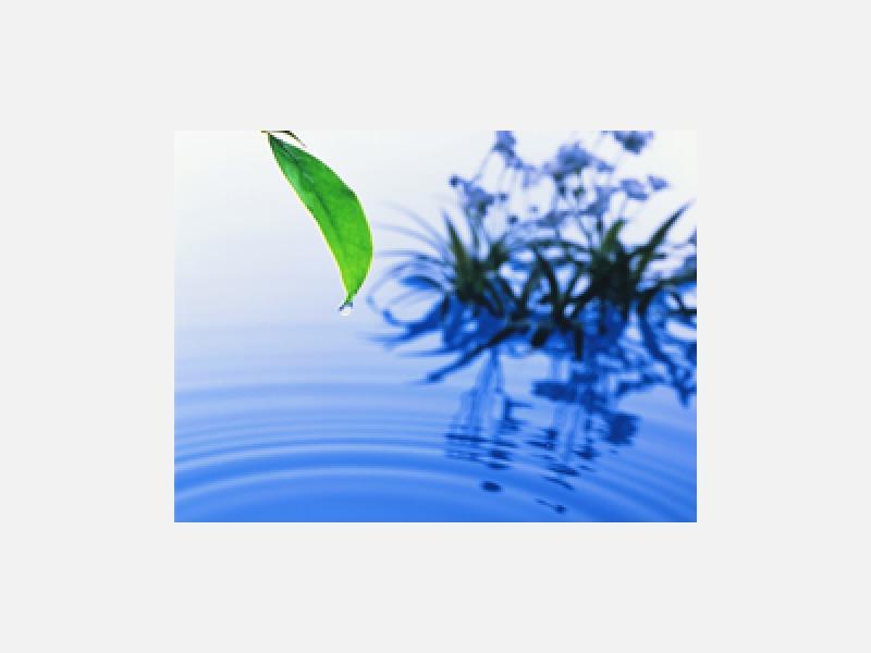 環境を守り、資源を活かす、佐藤興産