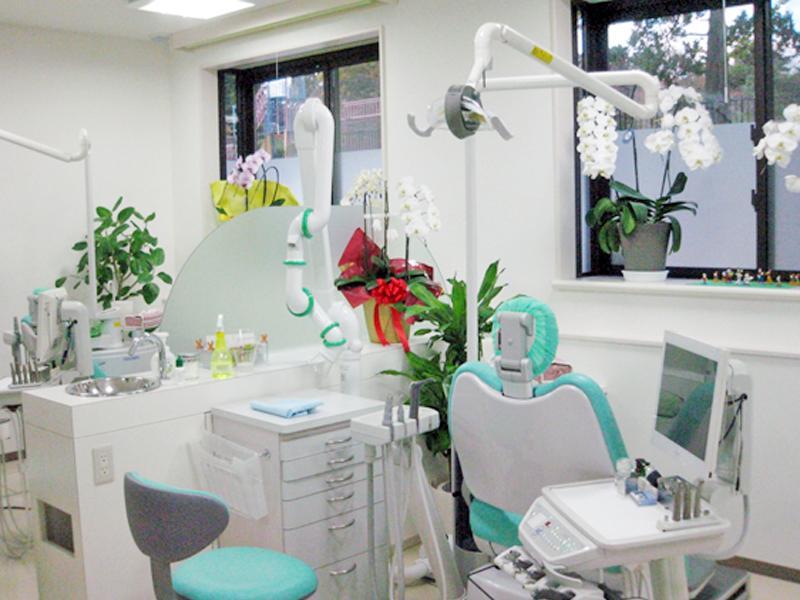 診療室:窓からは、四季折々の榴ヶ岡公園を臨めます
