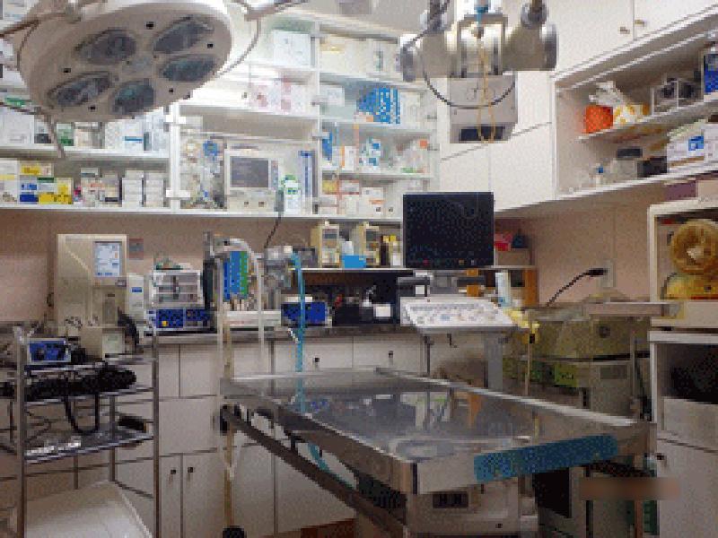 処置・手術室です。