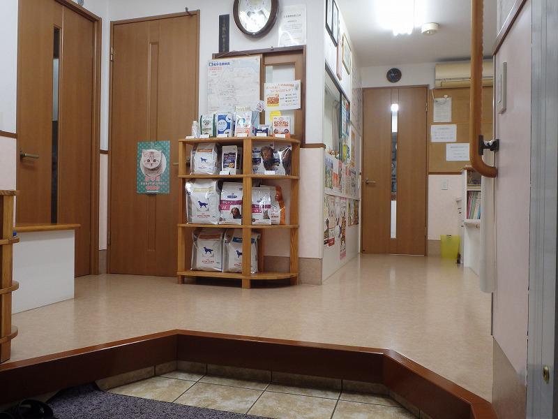 受付から院内を臨む。左右に待合室があります。