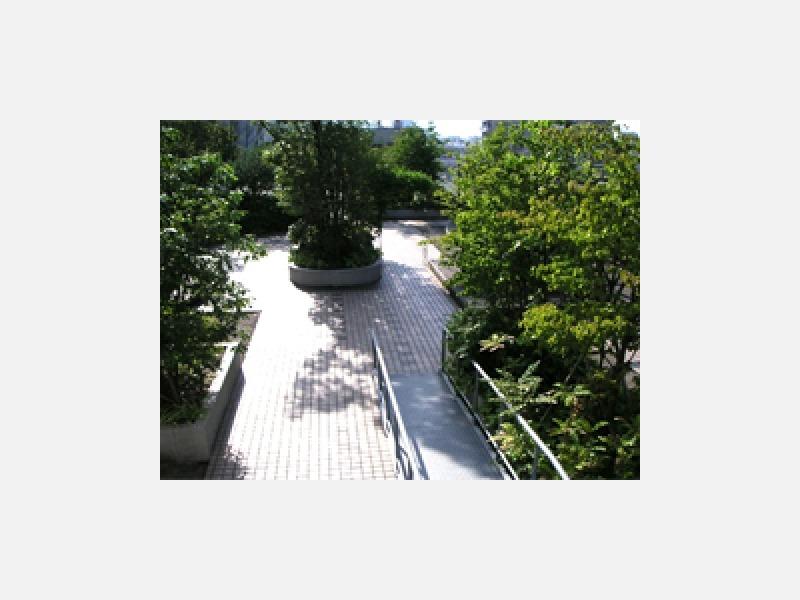 屋上庭園(散策可能)