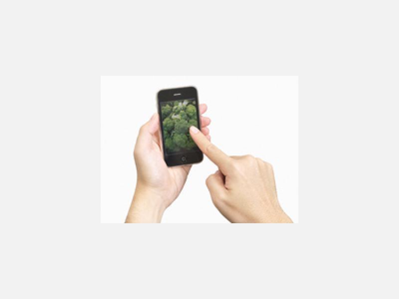 ◇携帯に登録して、お電話下さい。見積もり無料です!