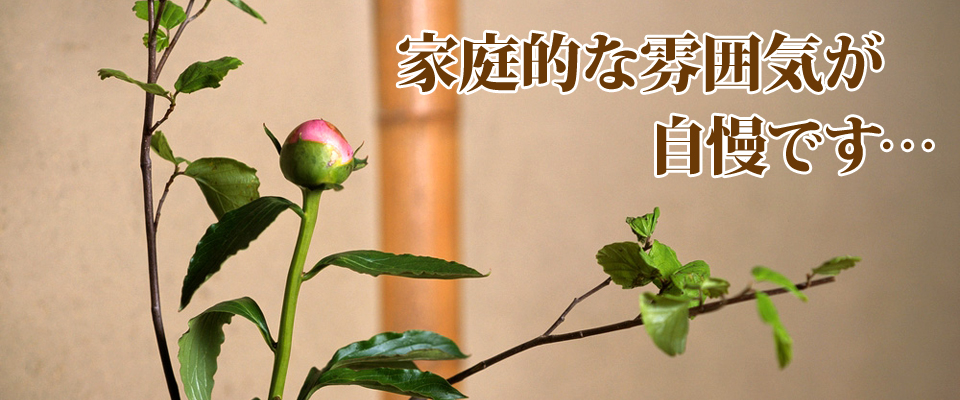一関市 花泉駅 ビジネス旅館 旅館 辰巳旅館