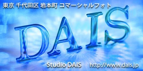 有限会社スタジオダイスロゴ