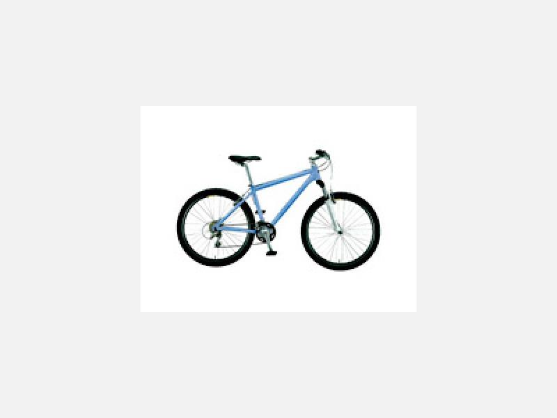 ◆スタンダード マウンテンバイク