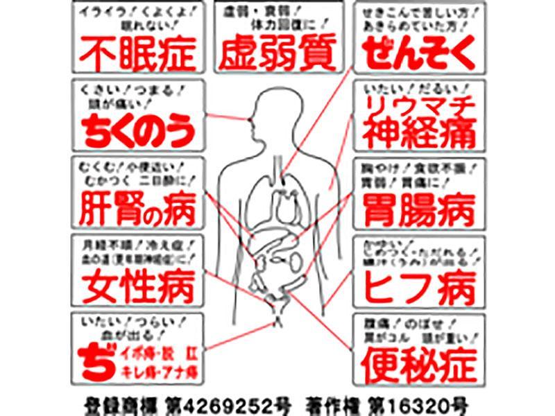 ホノミ人体図