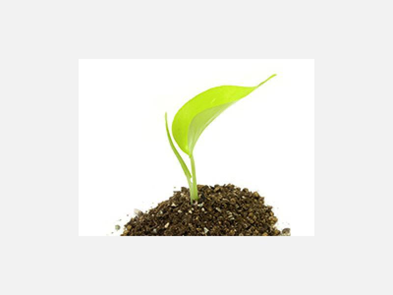 伊藤解体工業は環境にやさしい解体業者です