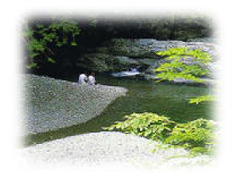 御手洗渓谷。光の滝など渓谷美を堪能できます。