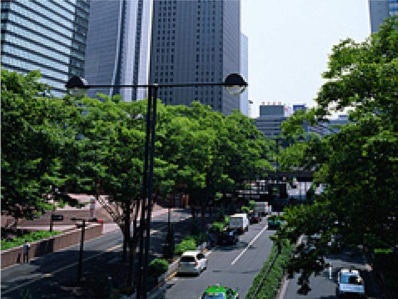 新宿の、町の、女性弁護士です