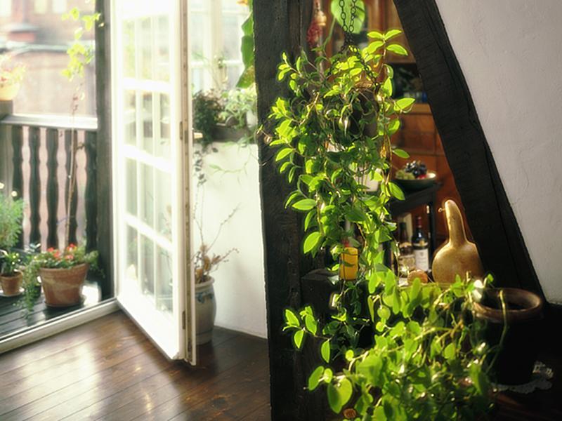 洋館風のイメージの玄関