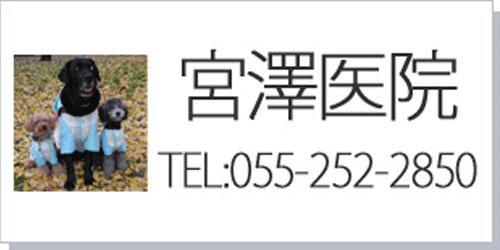 宮澤医院ロゴ