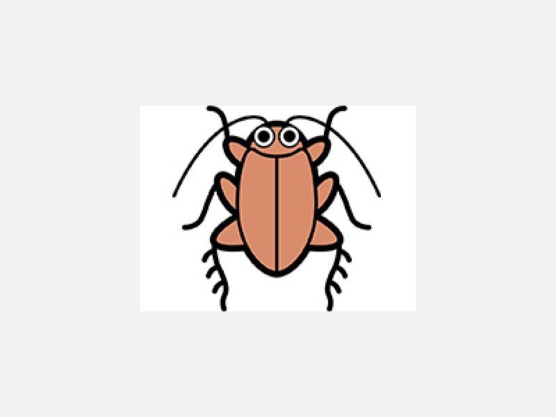松戸市トキワ消毒有限会社 白あり・ゴキブリの駆除も承ります