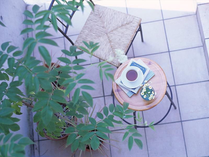 ◆緑のある暮らし始めませんか?